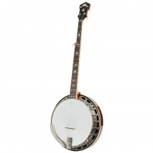 Recording King RK-R36-BR The Madison Resonator Banjo