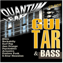 Eastwest Quantum Leap Guitar & Bass Akai Sample-CD
