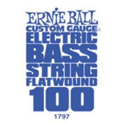 Ernie Ball 1797 Flatwound .100 Saite für E-Bassgitarre