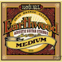 Ernie Ball 2002 Acoustic Guitar Earthwood Saitensatz, medium (.013)