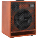 Acus One For Bass acoustic amplifier