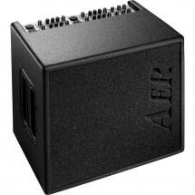 AER Domino 3 100W acoustic guitar amp