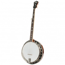 (B-Ware) Recording King RK-R36-BR The Madison Resonator Banjo